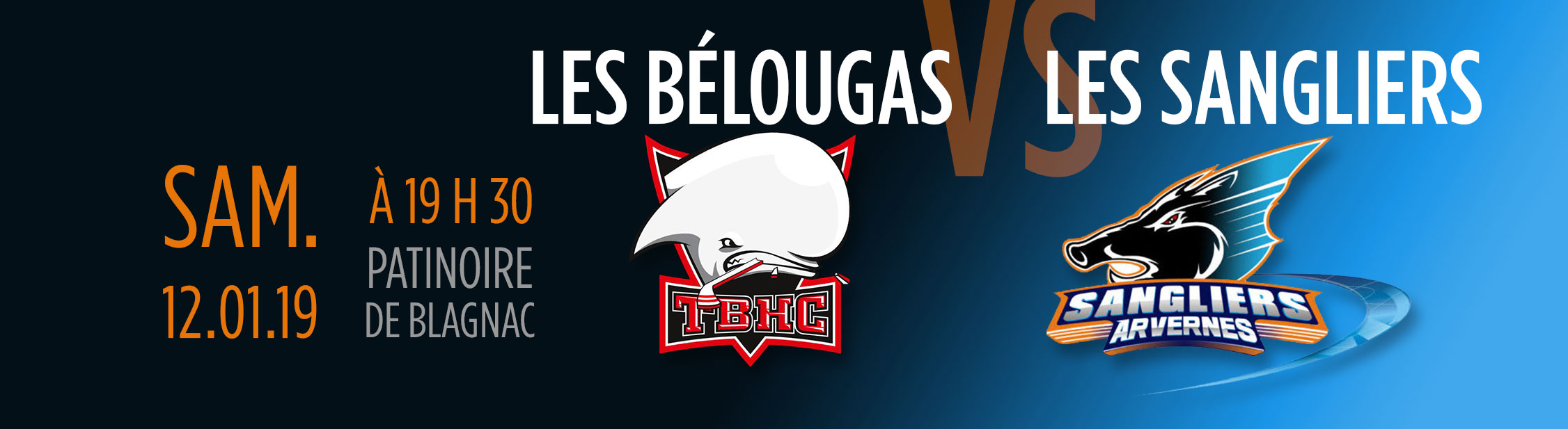visuel hockey belougas sangliers